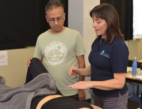 Sports Massage Techniques – A Beginner's Guide to Sports Massage Techniques